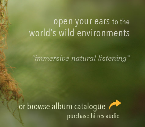 Listening Earth - nature sounds of nature, birdsong
