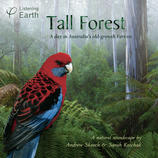 Tall Forest - sounds from Australia's old growth eucalypt forest