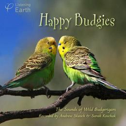 Happy Budgies album