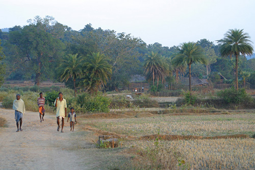 Village in Satkosia