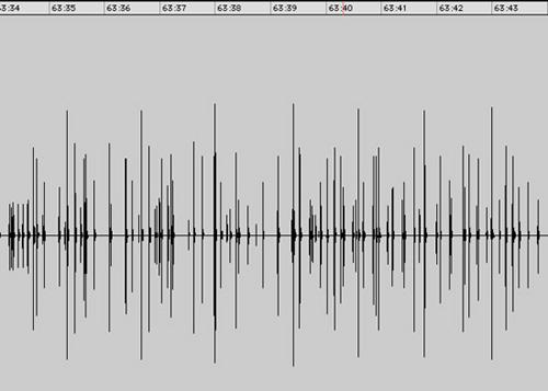 Frog calls waveform