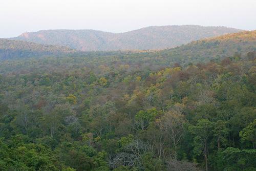 Sunabeda Landscape