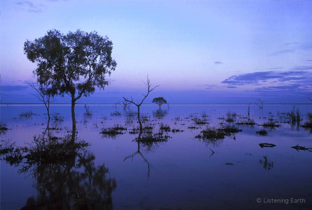 Pine Lake at dusk