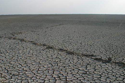 The Raan of Kutch, Gujarat, India