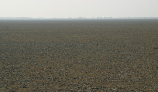 The Raan of Kutch, Gujarat, India