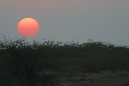 Sunset on the Rann