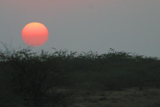 Sunset on the Rann