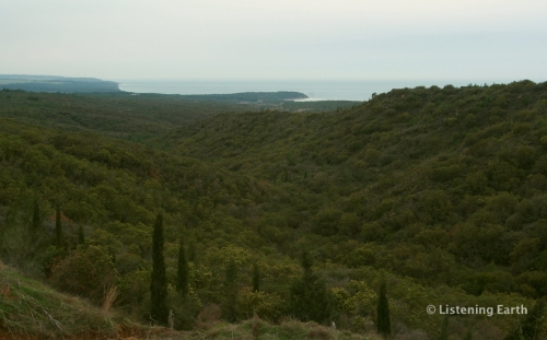 Overlooking Shrapnel Valley, Gallipoli