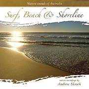 Surf, Beach and Shoreline album cover