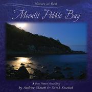Moonlit Pebble Bay album cover