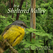 'In a Sheltered Valley' album cover