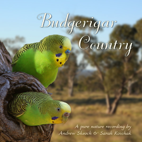 Budgie Sounds | Best | Free |